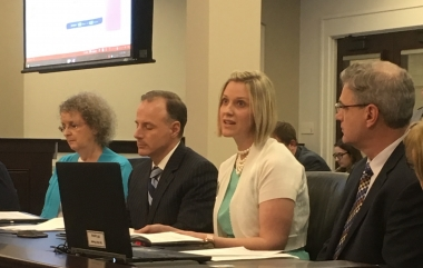 Laura Dickinson introducing a resolution honoring pregnancy centers at Kentucky's Health and Family Services Committee.